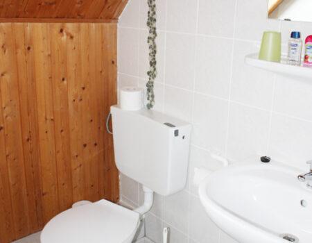 Ferienwohnung Kastanie - Bad mit Dusche und WC