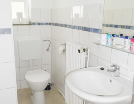 Ferienwohnung Ulme - Bad mit Dusche und WC