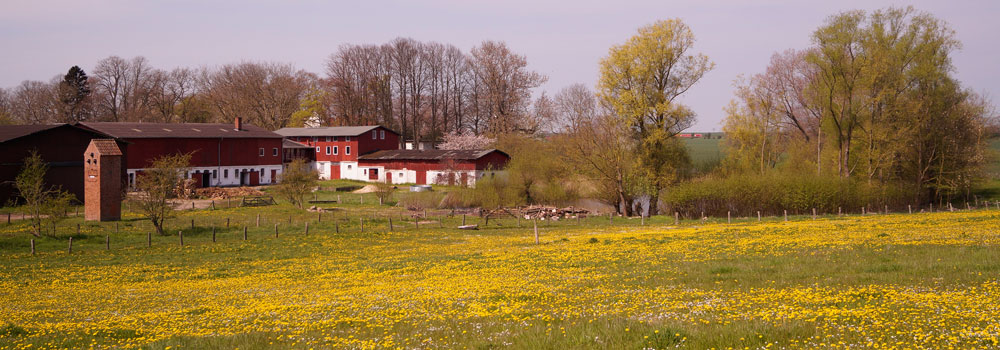 Frühling, Sommer, Herbst und Winter, der 4-Jahreszeiten-Hof