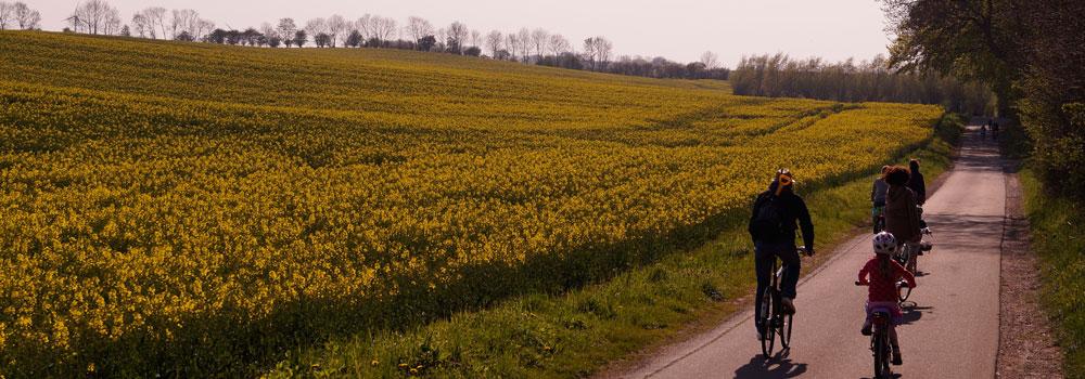 Wunderschöner 2km langer Radweg zum Naturstrand